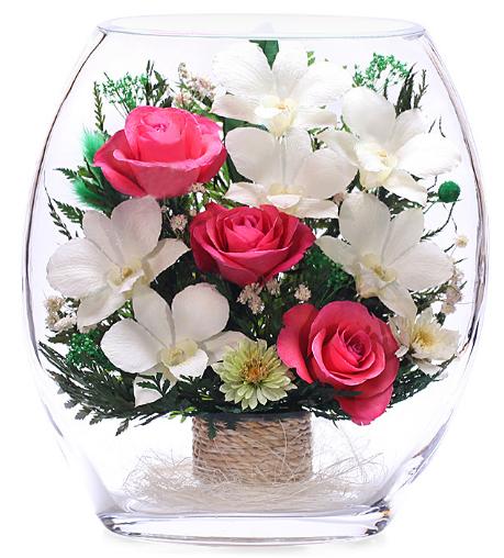 Где купить розы статуэтки плетистые розы для подмосковья купить